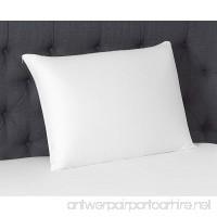 Beautyrest Latex Foam Pillow (Standard 2 Pack) - B0796KYSL4