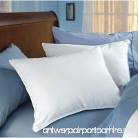 Down Dreams Classic King Pillow Set of 2 - B073XPKBC3