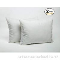 Foamily 2 Pack Bed Pillows For Sleeping - Cotton & Super Plush Down Alternative - Dust Mite Resistant & Hypoallergenic Insert (Queen/Standard) - B06ZZNKVBJ