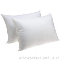 Standard Size Bedding Pillow Hypoallergenic Jumbo Sham Stuffer Pillow  Set of 2 - B075MSWKCC