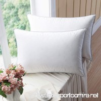 WENERSI Premium Goose down Pillows with Feather blended (2-pack  Queen Soft) 100% Cotton Shell with ULTRA FRESH Treatment - B06XKP6ZPR
