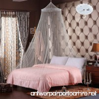 RETON 2 Pcs Jumbo Mosquito Net Elegant Lace Bed Canopy with 2 Hooks Queen Size White - B07BHJS6FB