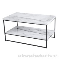 Tilly Lin 2 Tier Faux Marble Coffee Table  Water Resistant Accent Cocktail table with Lower Storage Shelf  Carrara - B075QBC782