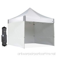E-Z UP ES100S Instant Shelter Canopy 10 by 10' White - B000QBUCEW